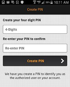 Create Pin Page