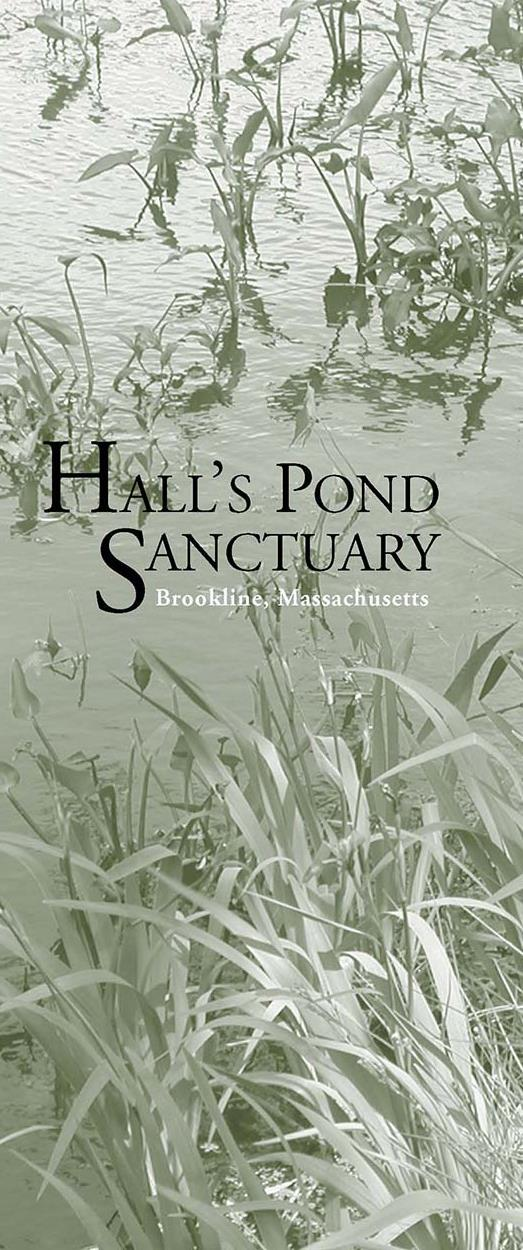 Hall's Pond Sanctuary Brochure