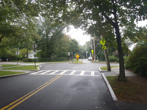 Neighborhood Traffic Circle on South Street