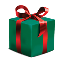 WrappedGift.png